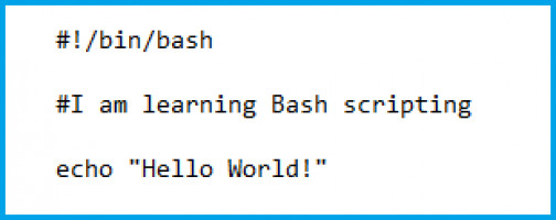 How to create script in Bash